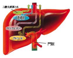 http://www.newton-doctor.com/kensa/images/01.jpg